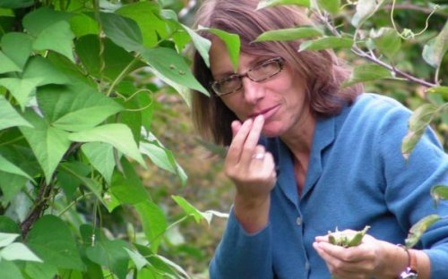 Mmmh, die werden schecken! Gibt's am abend mit den violetten Kartoffeln und eigenen Tomaten mit Basilikum.